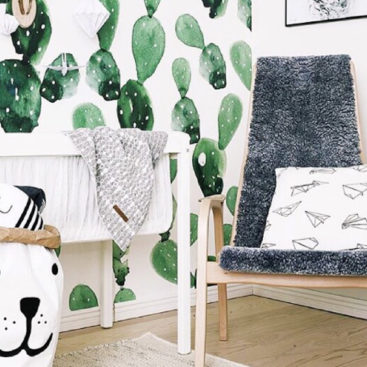 Cactus wallpaper 1