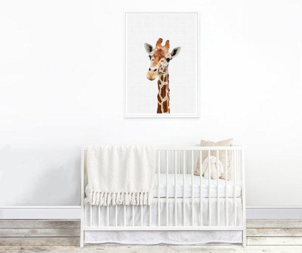 Giraffe gaze poster A3 2